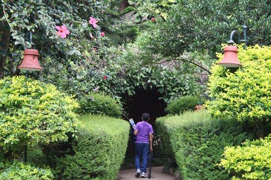 Club Mahindra Thekkady : garden