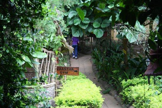 Club Mahindra Thekkady : hotel garden