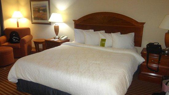 Hilton Garden Inn Richmond South/Southpark: Bed