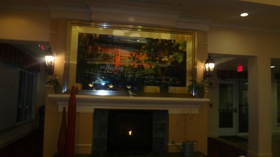 Hilton Garden Inn Richmond South/Southpark: Hotel
