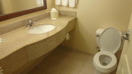 Hilton Garden Inn Richmond South/Southpark: Bathroom