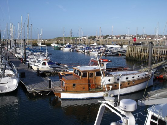 The Waterfront : ANSTRUTHER HARBOUR
