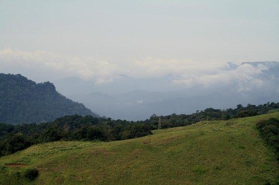 Club Mahindra Thekkady : trekking photo