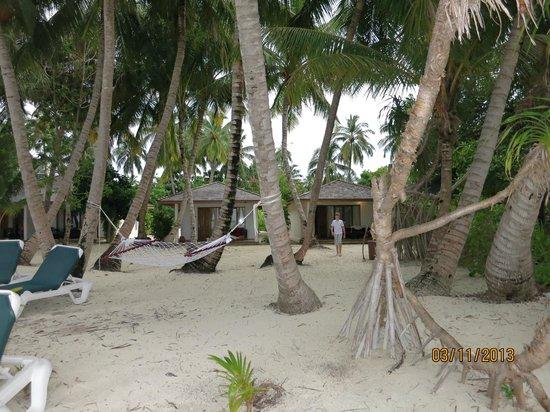 Vilamendhoo Island Resort & Spa: Вид на виллы бич