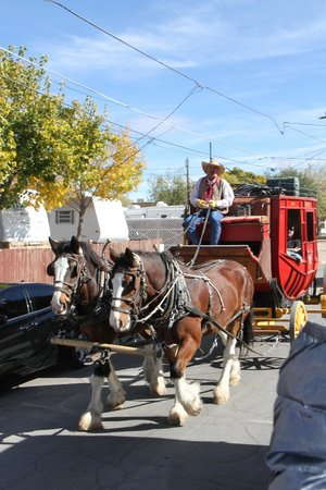 Tombstone Trolley Tour: Stage Coach