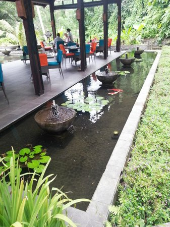 The Samaya Bali Ubud: the restaurant .. driving down for 30 meters down