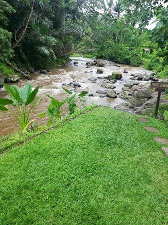The Samaya Bali Ubud: river