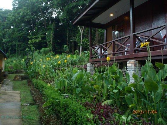 Tenggol Island Beach Resort: Rooms