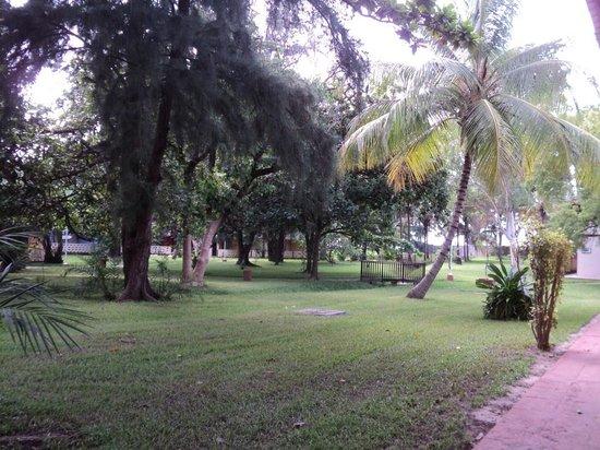 Senegambia Beach Hotel: immersi nella natura
