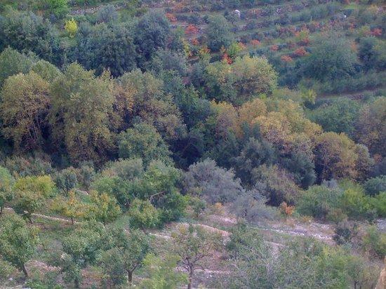 Vallée de Qadisha : Qadisha valley - UNESCO world heritage site