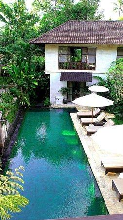 Villa Saraswati: View from the Lotus Room