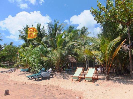 Hotel Frangipani Beach Villas : view of the beach