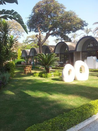 Oasis Hotel: Rooms