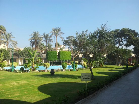 Oasis Hotel : Play ground