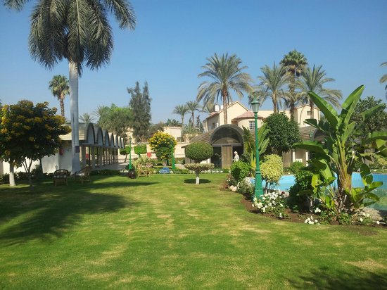 Oasis Hotel: Room and lawn
