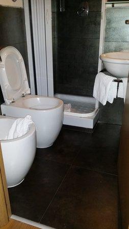 Park Hotel Ginevra : Il bagno