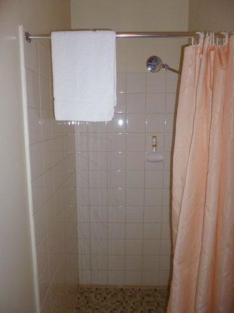 Norfolk Motor Inn: Shower recess with poor water pressure