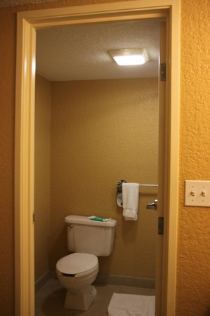 Holiday Inn Express and Suites Fort Lauderdale Executive Airport: chuveiro baixo