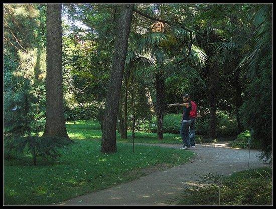 Orto Botanico di Padova: Interno della parte vecchia