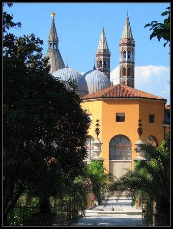 Orto Botanico di Padova: Building where the Goethe's Palm is