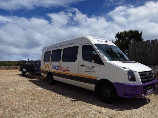 Baz Bus - Day Tours: Our mini bus