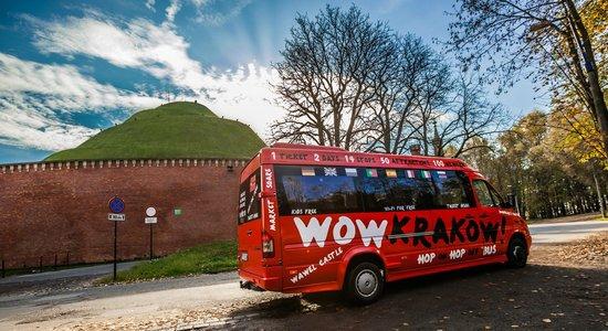 Wow Kraków - Private Day Tours