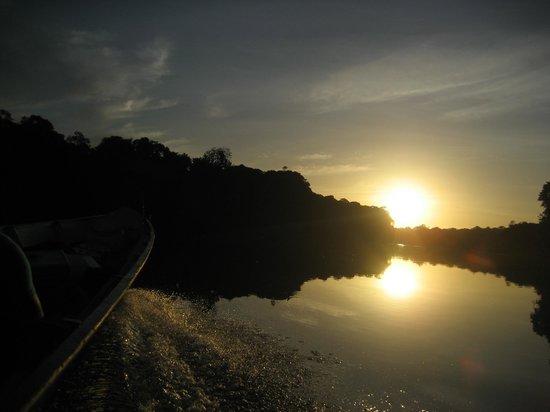 Jungle Lodge Palumeu: Sunset op de rivier