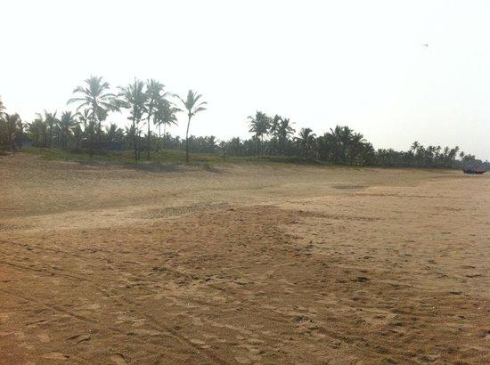 Park Hyatt Goa Resort and Spa: Beach from Resort