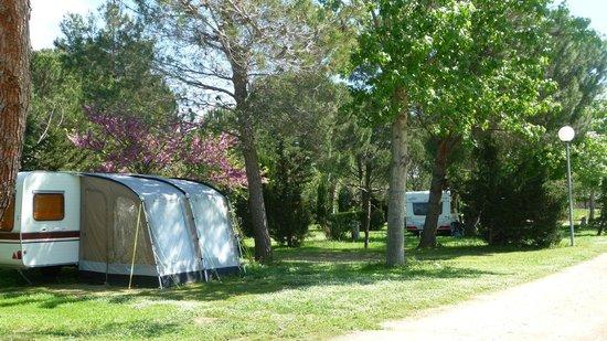 Camping les Casteillets : emplacement