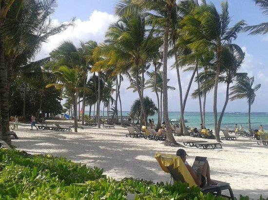 """La mejor playa del Mundo """"Bavaro"""""""