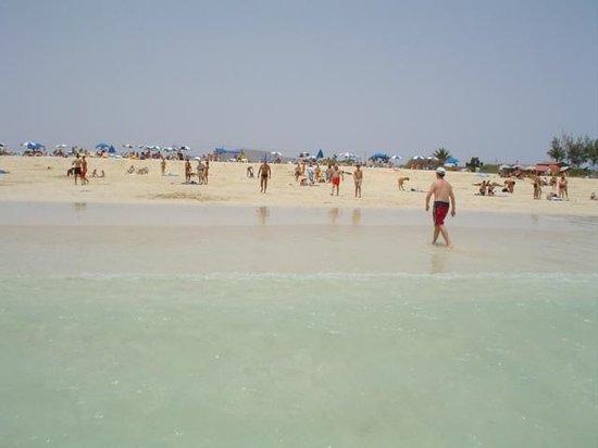 Fuerteventura, Spanien: Playa
