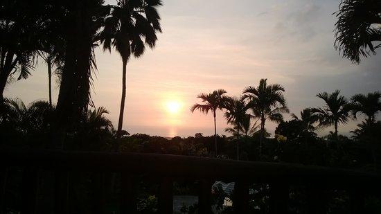 Hawaiian Oasis B&B: View from Aloha Room