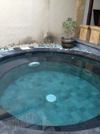 Bali Ayu Hotel: the jacuzzi villa