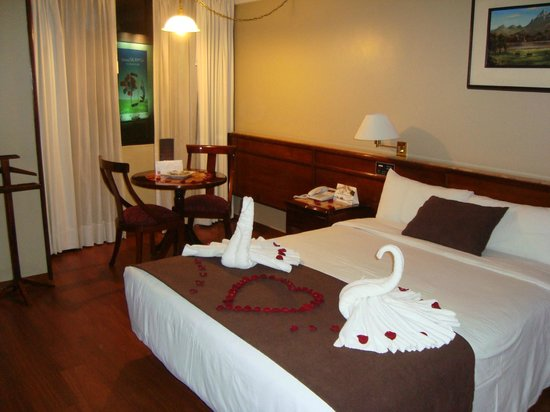 Hotel Reina Isabel : Quarto