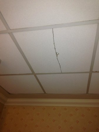 Cobden Hotel Birmingham: Crack in roof