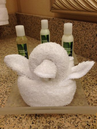 Homewood Suites by Hilton Ithaca: our duck