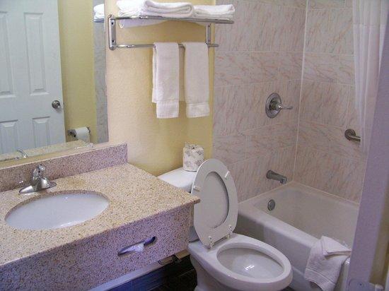 Americas Best Value Inn - Medical Center / Lubbock: Bathroom