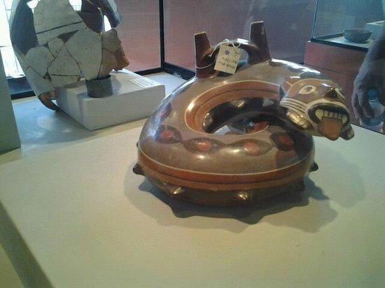 Didactic Museum Antonini (Museo Antonini): Piezas inigualables