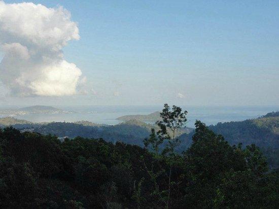 Gite du Mont Combani: La vue de la terrasse avec les hamacs