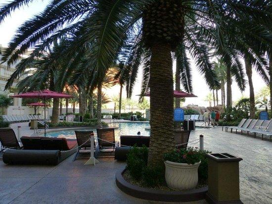 Monte Carlo Resort & Casino: Pool