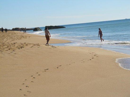 Monica Isabel Beach Club: beach