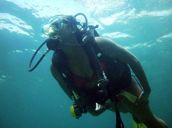 Searobin Dive Center : .