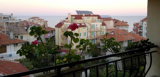 Guest House Raikovi : Вид с балкона