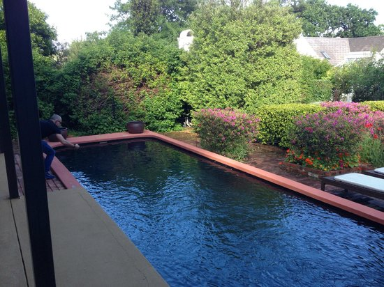 Akademie Street Boutique Hotel and Guest House : lovely pool