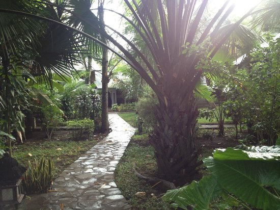 The Village Bunaken: garden pathways