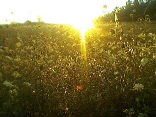 Agriturismo Valdichiascio: tramonto