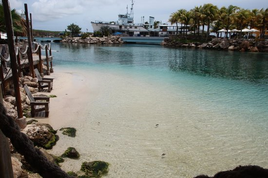 Lions Dive & Beach Resort Curacao: Praia do Hotel