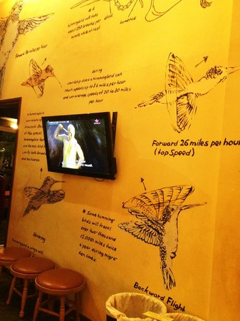 Hummingbird Eatery: Hummingbird facts. I learned quite a lot about them :-p