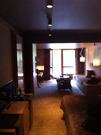 Sport Hotel Hermitage & Spa: big room
