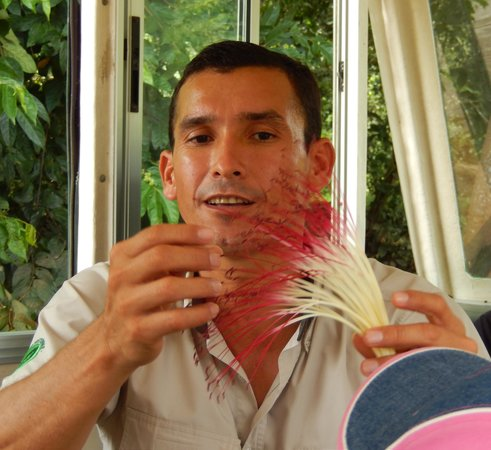 Canoa Aventura: Jorge showing us one of the many beautiful flowers